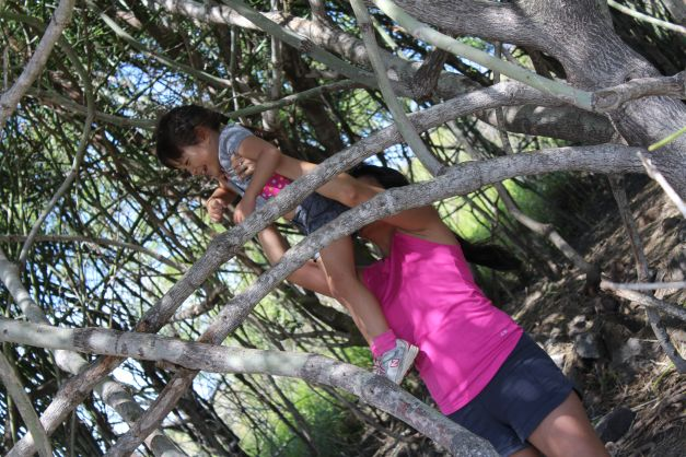 On the way up, Madison saw a section of trees with low branches that she was interested in hanging on.